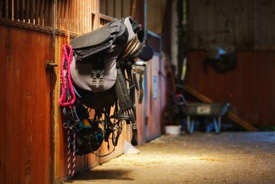 Billigt og sikkerhedsgodkendt rideudstyr til nybegynderen