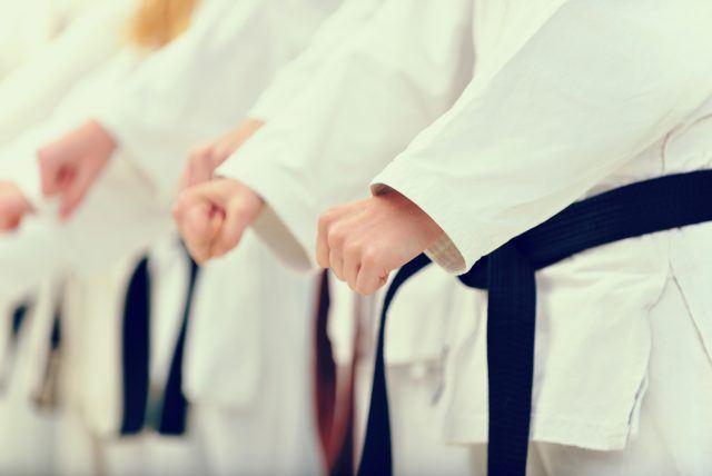 Karate; kihon, kata og kumite